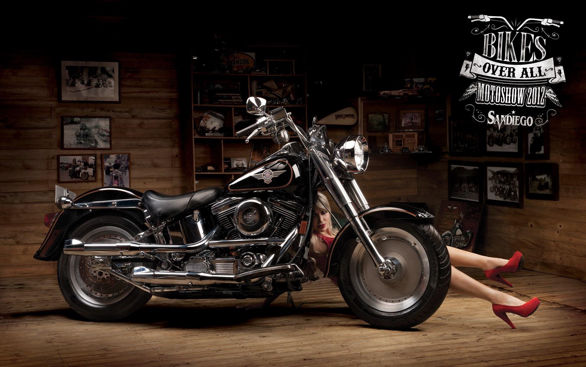 Harley Davidson замена #10